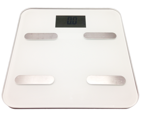 Ideal Protein Scale